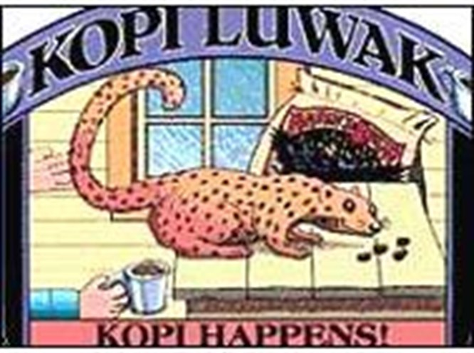 Elmas gibi kahve: Kopi Luwak